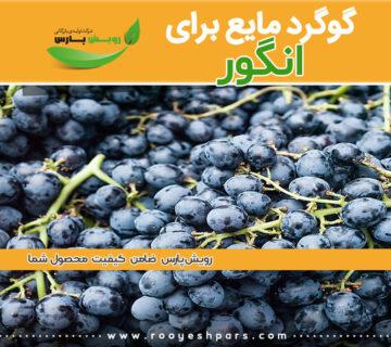 گوگرد-مایع-برای-انگور